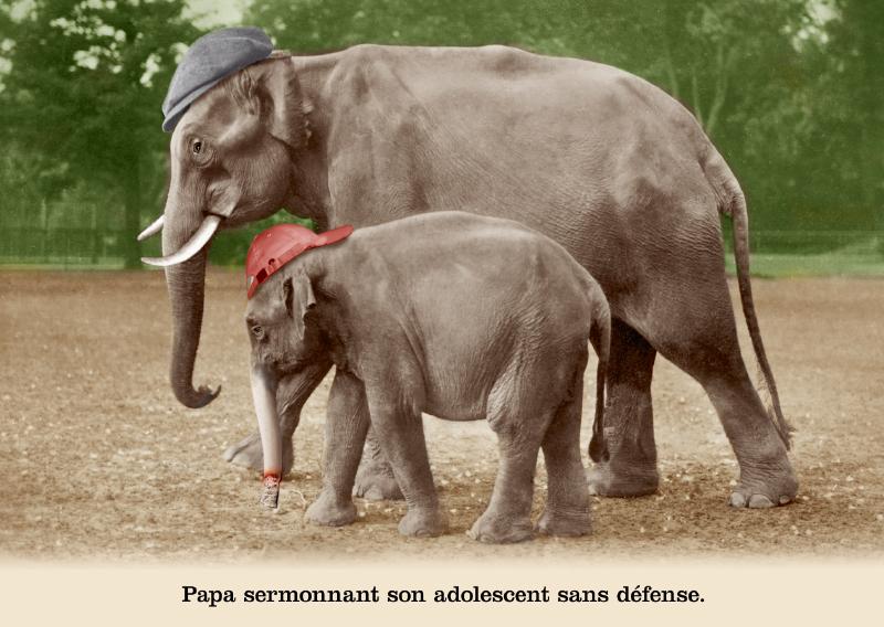 Les belles cartes postales de Bébert Plonk & Replonk – Collection «L'Univers à l'envers» – Papa sermonnant son adolescent sans défense.