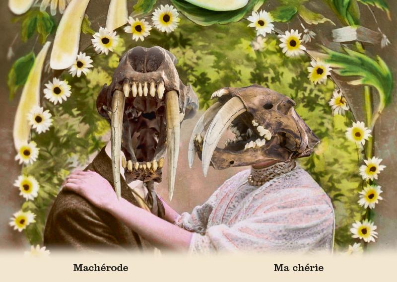 Les belles cartes postales de Bébert Plonk & Replonk – Collection «L'Univers à l'envers» – Machérode, ma chérie.
