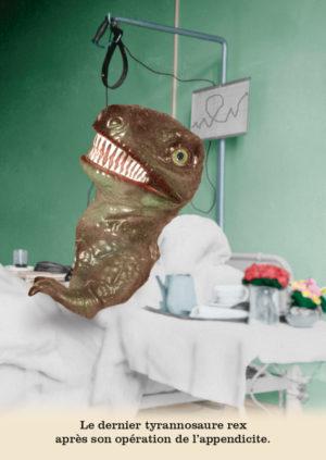 Les belles cartes postales de Bébert Plonk & Replonk – Collection «L'Univers à l'envers» – Le dernier tyrannosaure rex après son opération de l'appendicite.